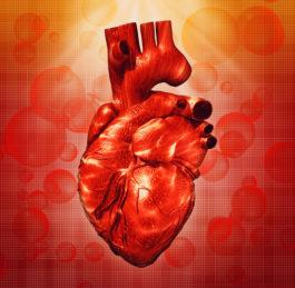 Onemocnění srdce a cév mohou dlouho probíhat skrytě, odhalte je včas