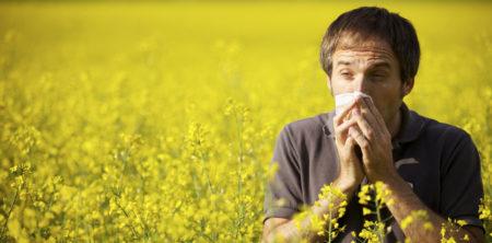 Nevíte, které pylové alergeny vás trápí? Zajděte si na krevní test.