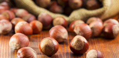 Proč ořechy před konzumací namáčet?