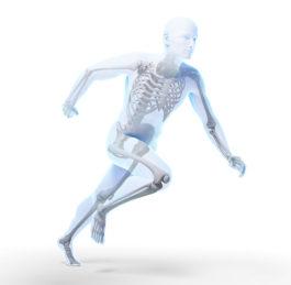 Tělo bez orgánů – bez kterých se dá normálně žít?