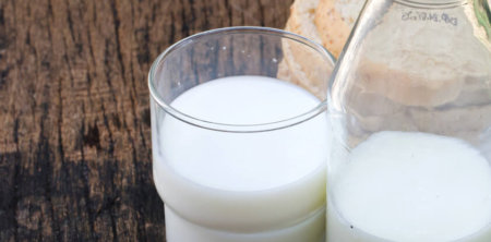 Klíšť. encefalitidu lze chytit i z nepasterizovaného mléka